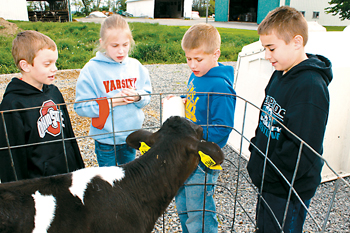 Sanders, left, Emma Buettner, center left, and Logan Dickman, right, watch as Mason Vonderwell feeds a calf at Hempfling's Dairy Farm during the annual FFA Food For America Tours Tuesday. Delphos FFA members offered the annual tours to third-graders from St. John's and Delphos City School's elementaries through Chief Supermarket, Mox Nursery, Hempfling Dairy Farm, Miller's Cattle Farm, Friedrich Hog Farm and Heidelbaugh Sheep Farm. (Delphos Herald/Stacy Taff)