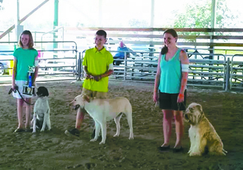 Members learn about dog care and obedience in 4-H K-9 club. They also have the opportunity to compete at the local and state fairs. (Putnam Sentinel file photo)
